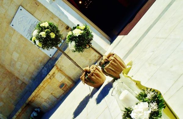Στολισμός γάμου με ελιές